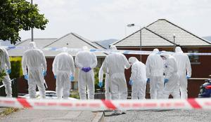 Forensic officers examine the scene in the Sunningdale Gardens area, off the Ballysillan Road on Monday 8th August 2016 following the fatal shooting of John Borland ( Photo by Kevin Scott / Presseye )