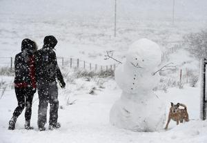 Pacemaker Press 08/12/2017 A Snow Man on Divis Mountain in Co Antrim  , as heavy snow falls across  Northern Ireland on Friday morning, leaving difficult driving conditions for motorists and some schools closed. Pic Colm Lenaghan/ Pacemaker