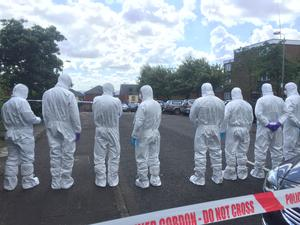 Forensics at the scene of the murder. Picture Kevin Scott