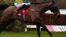 Dreamer: Lucy Wadham is hoping Le Reve can conjure magic on Saturday