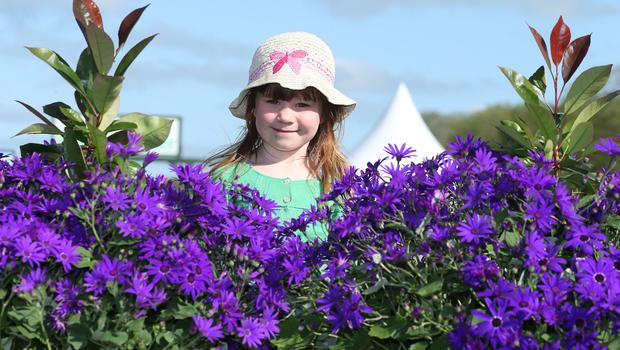 Katherine Smart (5) from Loughgall