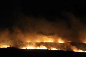 Firefighters tackle a gorse fire close to homes in Cushendall on Wednesday evening. Picture: Kevin McAuley.