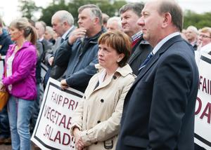 4rd September  2015  Famers and producers from all sections of the food producing industry hold protest at Stormont regarding the ongoing crisis concerning the price of food.   DUP MEP Diana Dodds pictured at the protest.   Picture by Jonathan Porter/PressEye