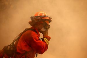 CLEARLAKE, CA - AUGUST 02:  An inmate firefighter shields his face from smoke during a burn operation to head off the Rocky Fire on August 2, 2015 near Clearlake, California. Over 1,900 firefighters are battling the Rocky Fire that has burned over 46,000 acres since it started on Wednesday afternoon. The fire is currently five percent contained and has destroyed at least 14 homes.  (Photo by Justin Sullivan/Getty Images)