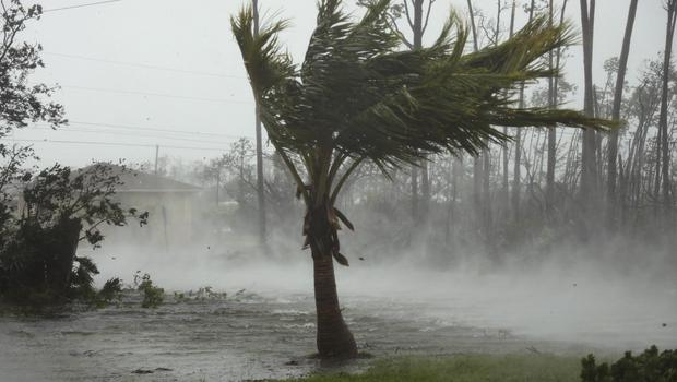 Strong wind from Hurricane Dorian blow the tops of trees while whisking up water from the surface of a canal in Freeport, Grand Bahama (AP)