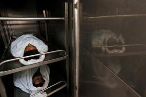 The bodies of Palestinians, killed in various Israeli airstrikes in the Rafah area, southern Gaza Strip, lie in the Rafah hospital morgue's cold storage, Wednesday, July 16, 2014. Israeli war planes and naval vessels intensified attacks across the Gaza Strip on Wednesday, targeting senior Hamas leaders and bombarding a coastal area, where four Palestinian boys were killed. The renewed violence came after Hamas formally rejected a cease-fire proposal that had been accepted by Israel to end the 9-day-old conflict that has left more than 200 Palestinians and one Israeli dead. (AP Photo/Lefteris Pitarakis)
