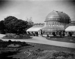 The Palm House in Botanic Gardens, Belfast.  7/5/1946 BELFAST TELEGRAPH COLLECTION/NMNI