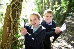 Toni Wilkinson and Andrew Christie from Hazelwood Integrated Primary School in north Belfast put the Woodland Trust's Throne Wood under the microscope