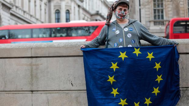LONDON, ENGLAND - MARCH 29: A protester holds the flag of Europe during a demonstration outside of Downing Street on March 29, 2017 in London, England. Later today British Prime Minister Theresa May will address the Houses of Parliament as Article 50 is triggered and the process that will take Britain out of the European Union will begin. (Photo by Jack Taylor/Getty Images)