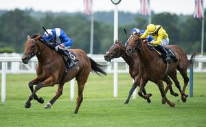 Royal occasion: Lord North, ridden by James Doyle, heads to the finish line to win the Group 1 Prince Of Wales' Stakes