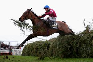 LIVERPOOL, ENGLAND - APRIL 09:  Rule The World ridden by David Mullins clears the last fence on their way to victory in the Crabbie's Grand National Steeple Chase at Aintree Racecourse on April 9, 2016 in Liverpool, England.  (Photo by Alex Livesey/Getty Images)