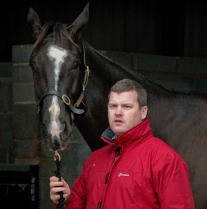 Set to return: Gordon Elliott with the gifted Don Cossack