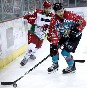 Belfast Giants winger Ciaran Long in action against the Cardiff Devils at the SSE Arena (William Cherry/Presseye)