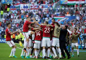 Hungary players celebrate after scoring the opening goal during the Euro 2016 Group F soccer match between Hungary and Portugal at the Grand Stade in Decines-Charpieu, near Lyon, France, Wednesday, June 22, 2016. (AP Photo/Pavel Golovkin)
