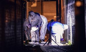 Forensics at the scene of a punishment shooting in the Springhill Drive area of west Belfast on May 10th 2020 (Photo by Kevin Scott for Belfast Telegraph)