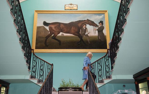 """ANTRIM, NORTHERN IRELAND - MAY 22:  Camilla, Duchess of Cornwall with the famous """"Hamiltonian"""" by George Stubbs as she visits Mount Stewart House and Garden on May 22, 2015 in Newtownards, Northern Ireland. Prince Charles, Prince of Wales and Camilla, Duchess of Cornwall visited Mount Stewart House and Gardens and Northern Ireland's oldest peace and reconciliation centre Corrymeela on the final day of their visit of Ireland.  (Photo by Eddie Mulholland - Pool/Getty Images)"""