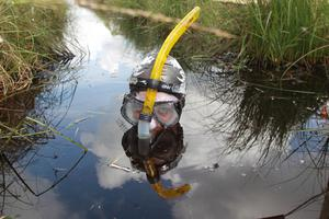 Pacemaker Press 28/7/2013 Dineka Maguire from Bellek  takes part in the Bog Snorkling championships at Peatlands Park in Co Tyrone on sunday Pic Colm Lenaghan/Pacemaker