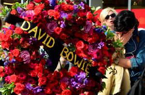 """A woman grieves beside a wreath donated from the Hollywood Chamber of Commerce which was delivered to the Hollywood Star of the late British musician David Bowie in Hollywood, California, on January 11, 2016. Bowie died at the age of 69 after a secret battle with cancer, prompting a cascade of tributes for one of the most influential and innovative artists of his time. A notoriously private person, Bowie's death was a shock with his death coming just two days after he released his 25th studio album """"Blackstar"""", on his 69th birthday on January 8. """"David Bowie died peacefully today (Sunday) surrounded by his family after a courageous 18-month battle with cancer,"""" said a statement posted January 11on his official social media accounts.  AFP PHOTO/FREDERIC J. BROWNFREDERIC J. BROWN/AFP/Getty Images"""