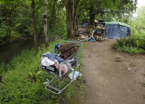 A grocery cart and homeless persons campsite in a wooded area. [File photo]