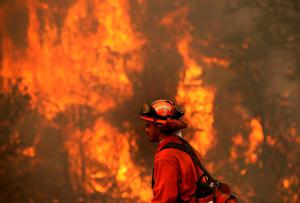 CLEARLAKE, CA - AUGUST 02:  A firefighter monitors a backfire during a burn operation to head off the Rocky Fire on August 2, 2015 near Clearlake, California. Over 1,900 firefighters are battling the Rocky Fire that has burned over 46,000 acres since it started on Wednesday afternoon. The fire is currently five percent contained and has destroyed at least 14 homes.  (Photo by Justin Sullivan/Getty Images)