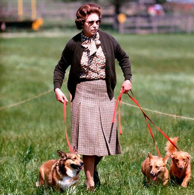 Queen Elizabeth II with some of her corgis walking the Cross Country course during the second day of the Windsor Horse Trials.  PA Wire