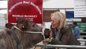 Michelle McCauley from Clough at the Balmoral Show with her shorthorn cows. This is the first time in 70 years that Shorthorns have been shown at the Balmoral show. Picture by Bernie Brown