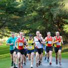 Belfast Telegraph - Run Forest Run - Tollymore, Newcastle - 4th January 2020 - Photograph by Mervyn McKeown, My Sports Photo