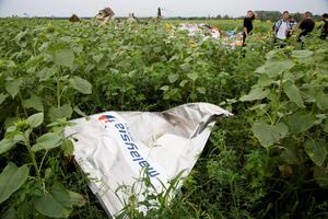 A piece of a plane with the sign 'Malaysia Airlines' lies in the grass as a group of Ukrainian coal miners search the site of a crashed Malaysian passenger plane near the village of Rozsypne, Ukraine, eastern Ukraine Friday, July 18, 2014. Rescue workers, policemen and even off-duty coal miners were combing a sprawling area in eastern Ukraine near the Russian border where the Malaysian plane ended up in burning pieces Thursday, killing all 298 aboard. (AP Photo/Dmitry Lovetsky)