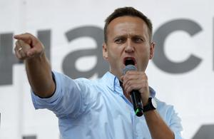 Mr Navalny has been a thorn in the Kremlin's side for a decade (Pavel Golovkin/AP)