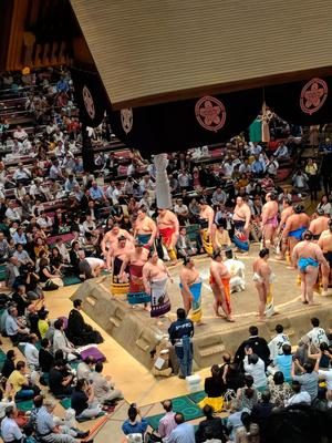 When in Japan: Jonathan Bradley took the opportunity to sample the nation's true sporting love.
