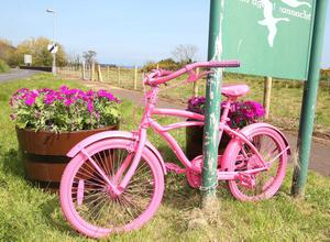 The Antrim coast turns pink ahead of next week's Giro d'Italia which will pass through the Northern Ireland beauty spot on day two of the bicycle race. A pink bike pictured at the entrance to Waterfoot in Co. Antrim