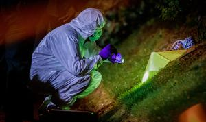 Police and forensics at two properties in the Lisanally Gardens area of Armagh where two devices were thrown at properties on January 14th 2021 (Photo by Kevin Scott for Belfast Telegraph)