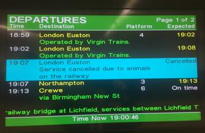 An information screen at Milton Keynes station after cows on the line caused disruption (PA Wire / Brian Farmer)
