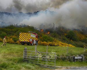 NIFRS at the scene of a large gorse fire in Castlewellan.