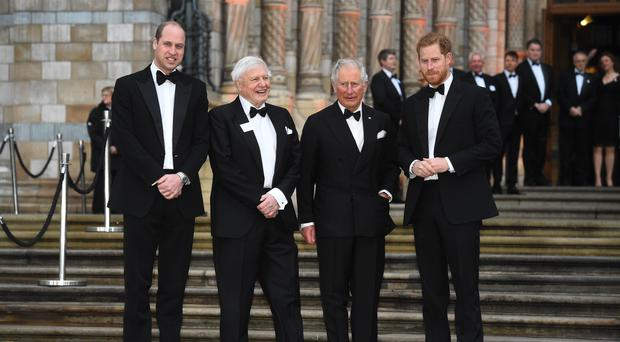 The Duke of Cambridge, Sir David Attenborough, the Prince of Wales and the Duke of Sussex at the global premiere of Netflix's Our Planet (Kirsty O'Connor/PA)