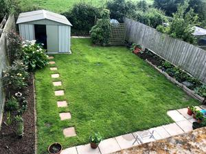 Before: Dympna and Benjamin Hannon's lawn