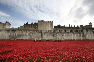 Memorable moment: the display of ceramic poppies outside the Tower of London