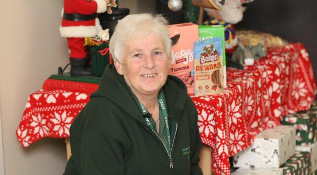 Mid Ulster Animal Sanctuary welfare manager Margaret Wade with dog Molly, who is looking for a home
