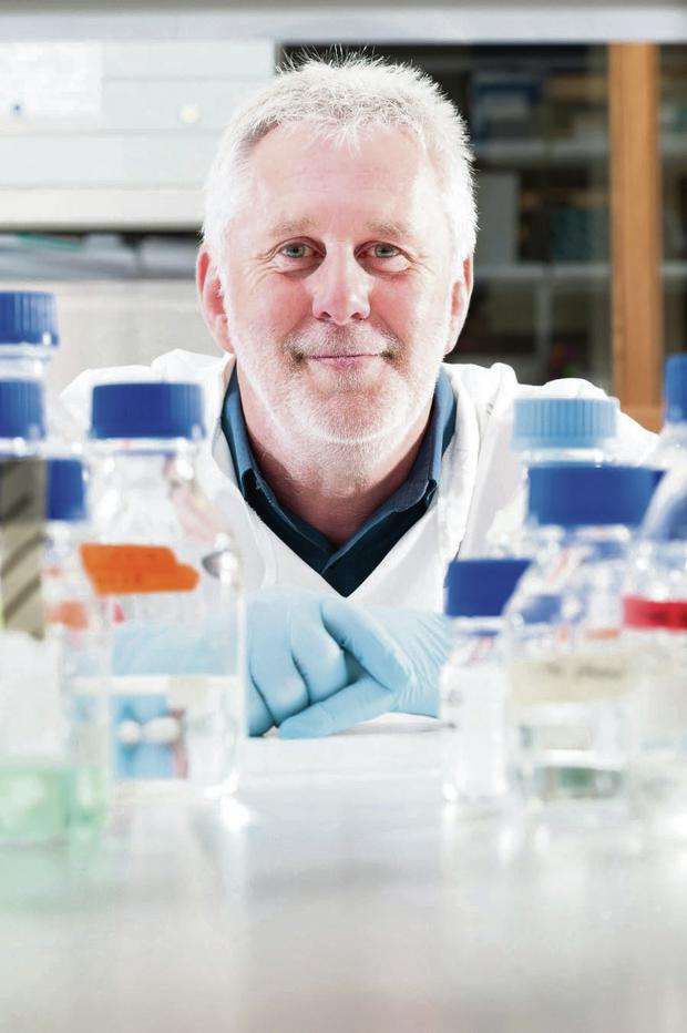 Career high: Professor Ken Mills' blood cancer research has been recognised internationally