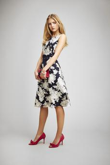 Dress, £140, Phase Eight