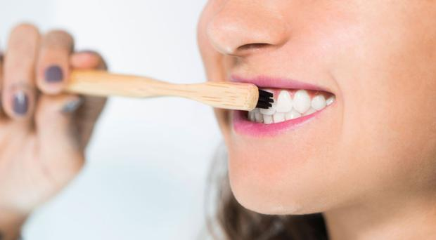 Brush strokes: bamboo handles are biodegradable