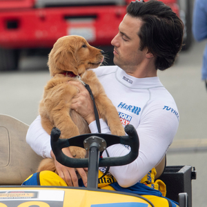 Man's best friend: Enzo (voiced by Kevin Costner) and Milo Ventimiglia
