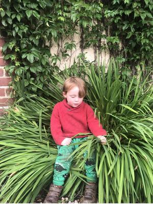 Kane's son Indy sitting among the plants and playing in the garden