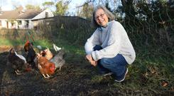 Belinda Bennett from Downpatrick recently appeared on the BBC Mountain Vets programme