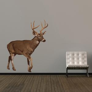 British Deer Wall Sticker, In Spaces