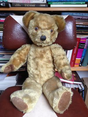 His beloved teddy bear sitting in the study