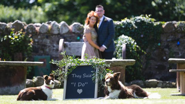 Joanne Cairns and her husband David on their wedding day with three of her dogs