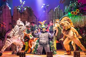 Madagascar the Musical at the Grand Opera House