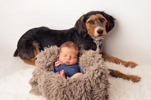 Gregor and Fiona Neish's baby son Leo and their pet dog Josie