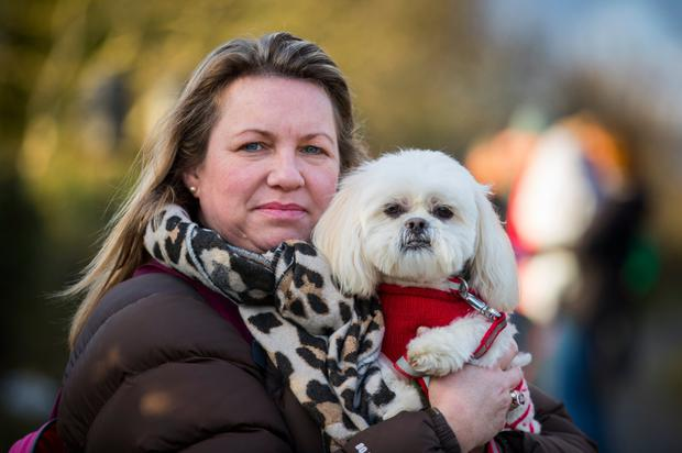 Puppy love: Joanne Crossley from Dog Friendly NI with her dog Georgie